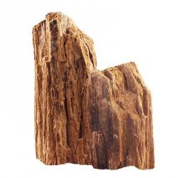 Skałka Skamieniałe drewno, M 20-30CM