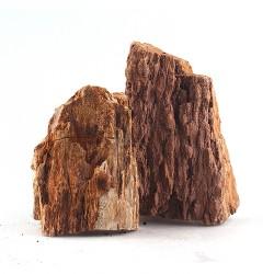 Skałka Skamieniały pień, S 5-10cm