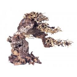 Korzeń bonsai, M 40CM