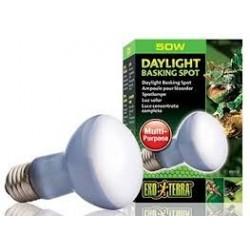 Żarówka Daylight Basking Spot R20/50W